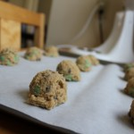 Mint Chocolate Chip Cookie Dough