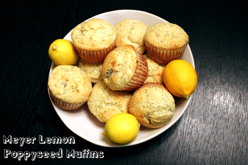 Meyer Lemon Poppyseed Streusel Muffins